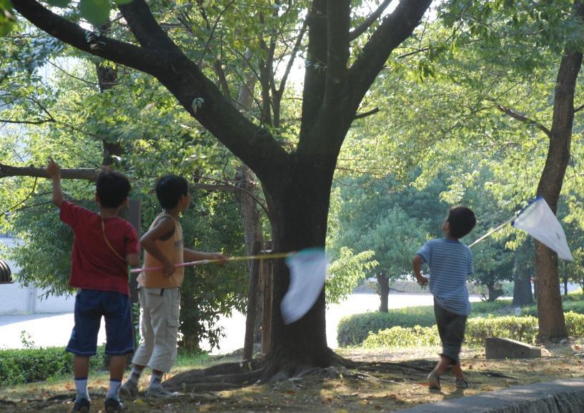 f:id:naga-aya-omiya:20180723174746j:plain