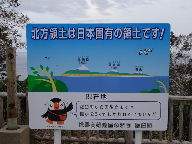 f:id:naga-aya-omiya:20181113184517j:plain