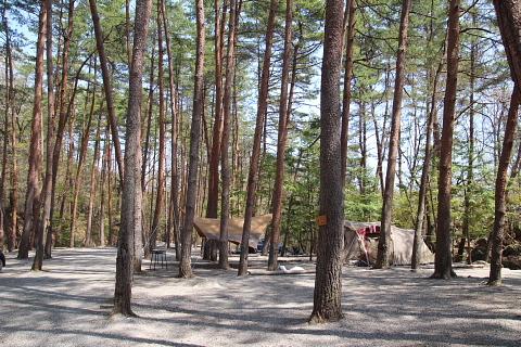 ビックランド 林間サイト