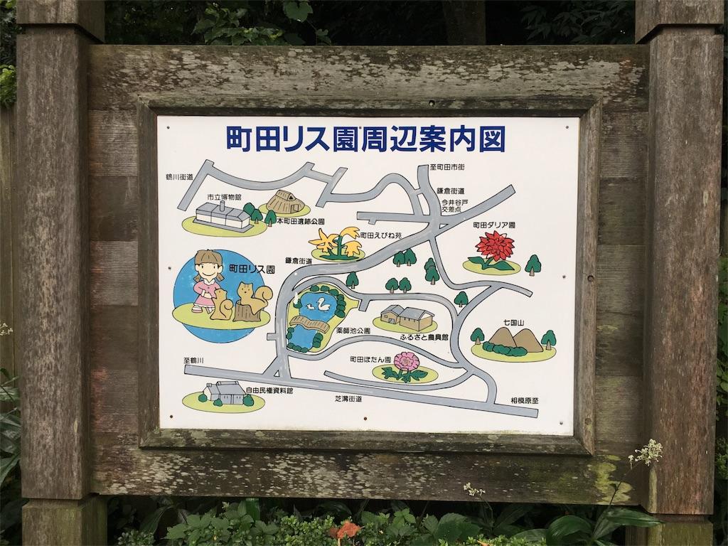 町田リス園 周辺案内