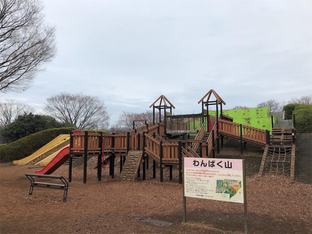 小金井公園 アスレチック