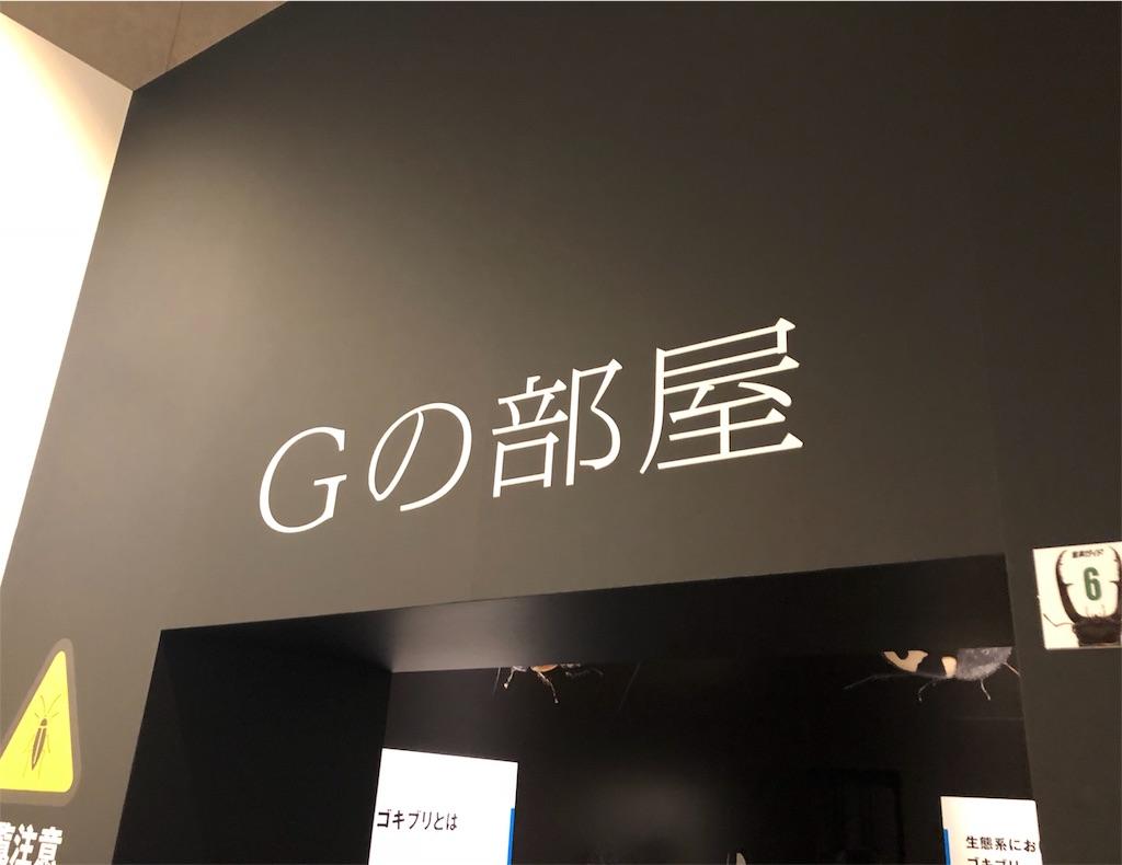 特別展 昆虫 Gの部屋