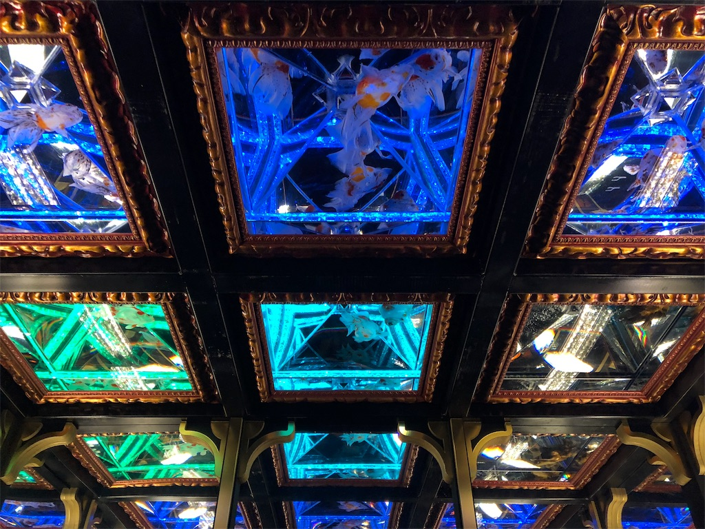 アートアクアリウム 天井金魚
