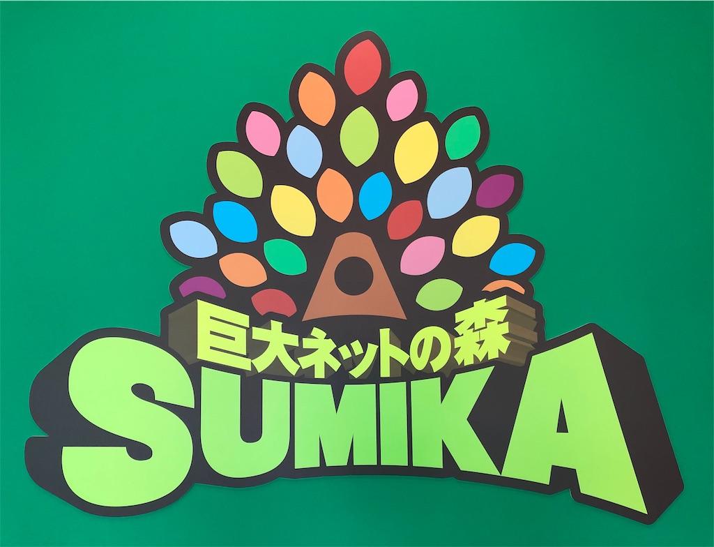 巨大ネットの森 SUMIKA