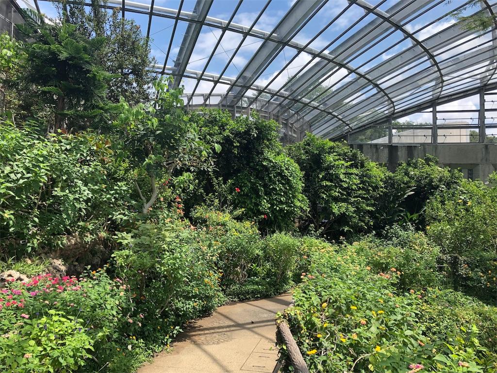 多摩動物公園 昆虫生態園
