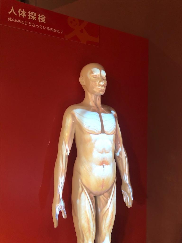 多摩六都科学館 人体探検