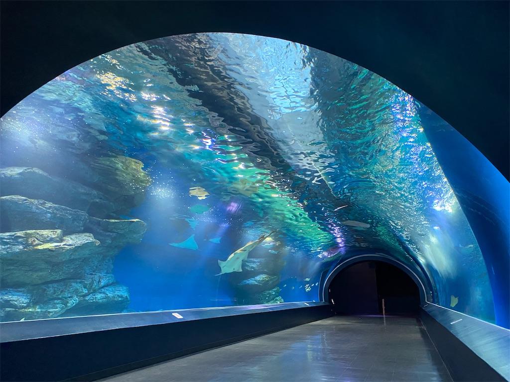アクアパーク品川 トンネル