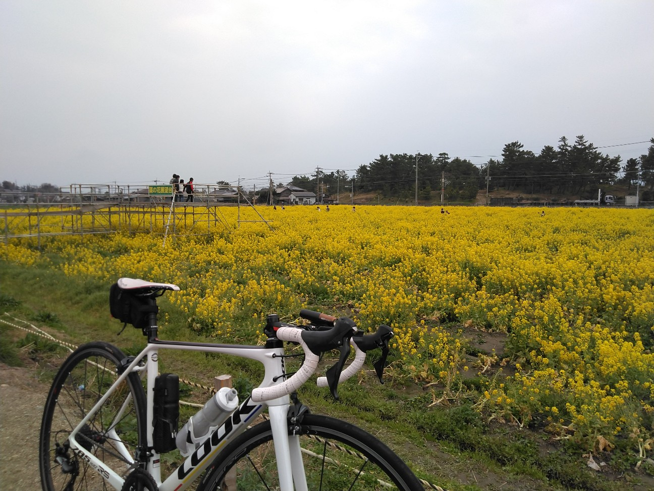 f:id:nagacchan:20210314163104j:image