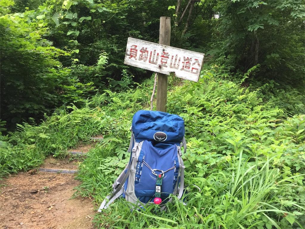 f:id:nagakawara:20160718161208j:image