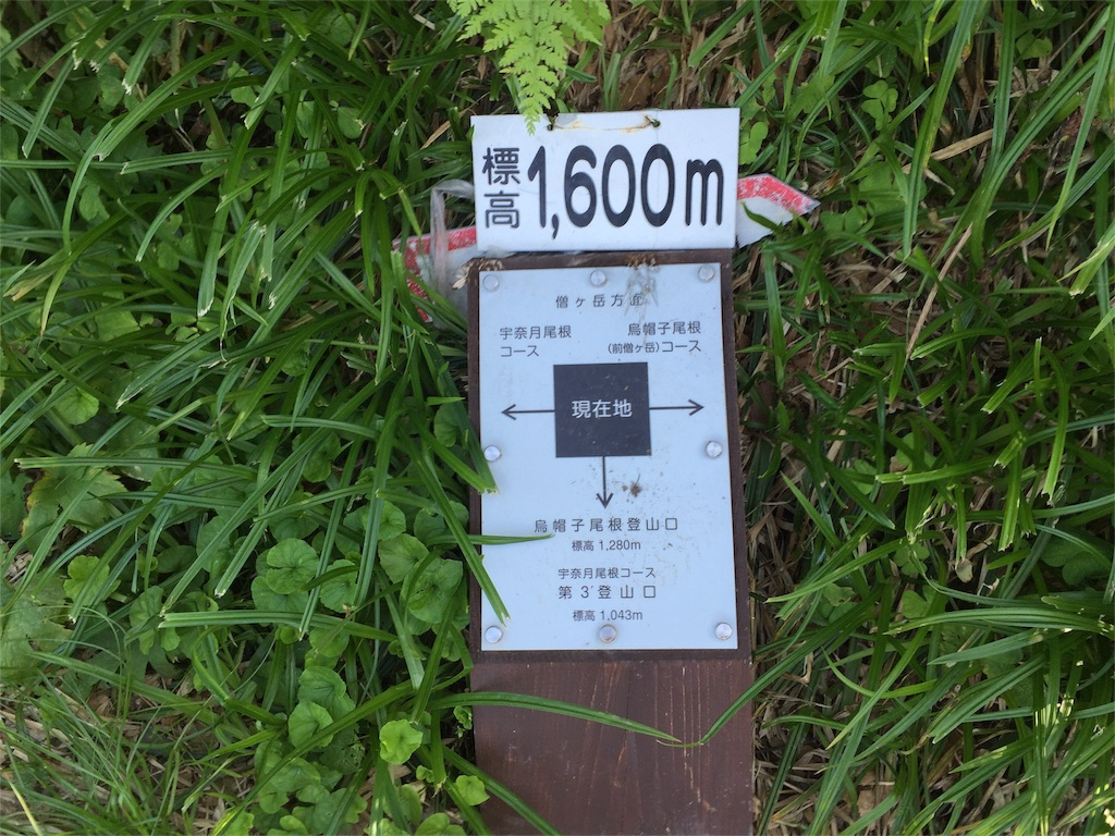 f:id:nagakawara:20160812194025j:image