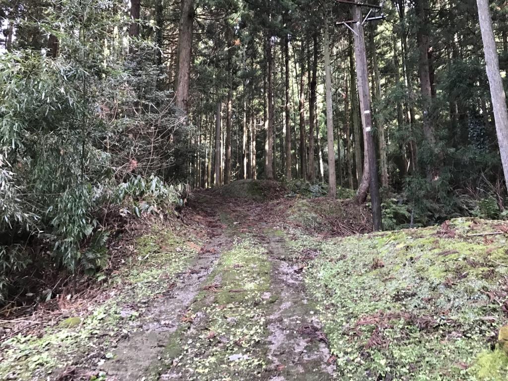 f:id:nagakawara:20161228171454j:plain:w500