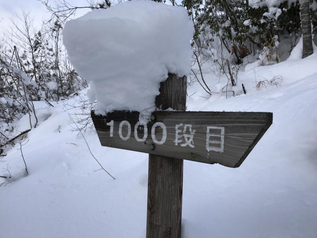 f:id:nagakawara:20180104171428j:plain