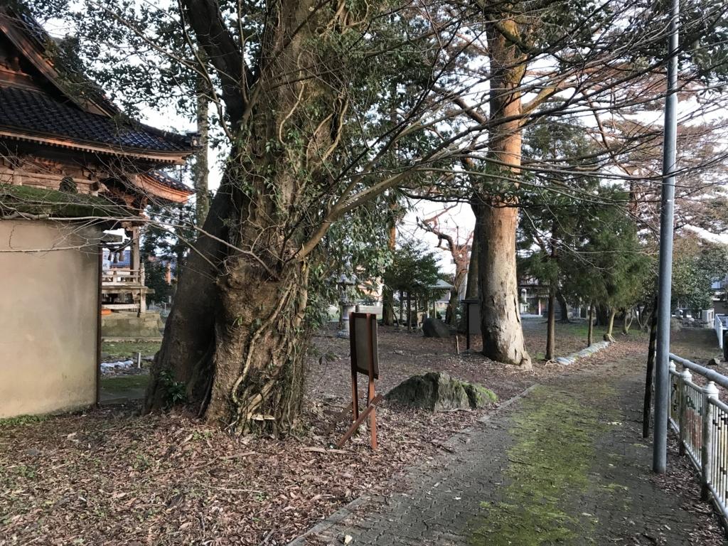 f:id:nagakawara:20180325105139j:plain