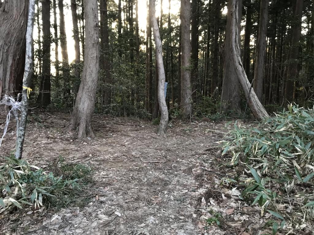 f:id:nagakawara:20180331204645j:plain