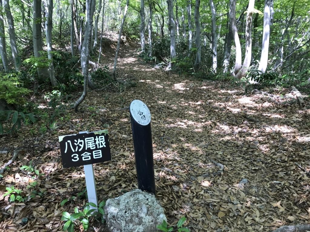 f:id:nagakawara:20180429050009j:plain