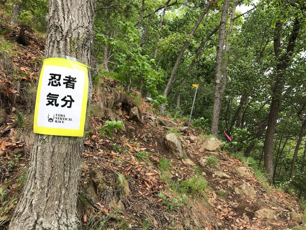 f:id:nagakawara:20180608183232j:image