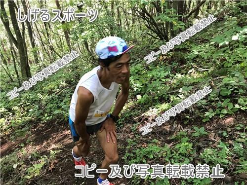 f:id:nagakawara:20190201185220j:plain