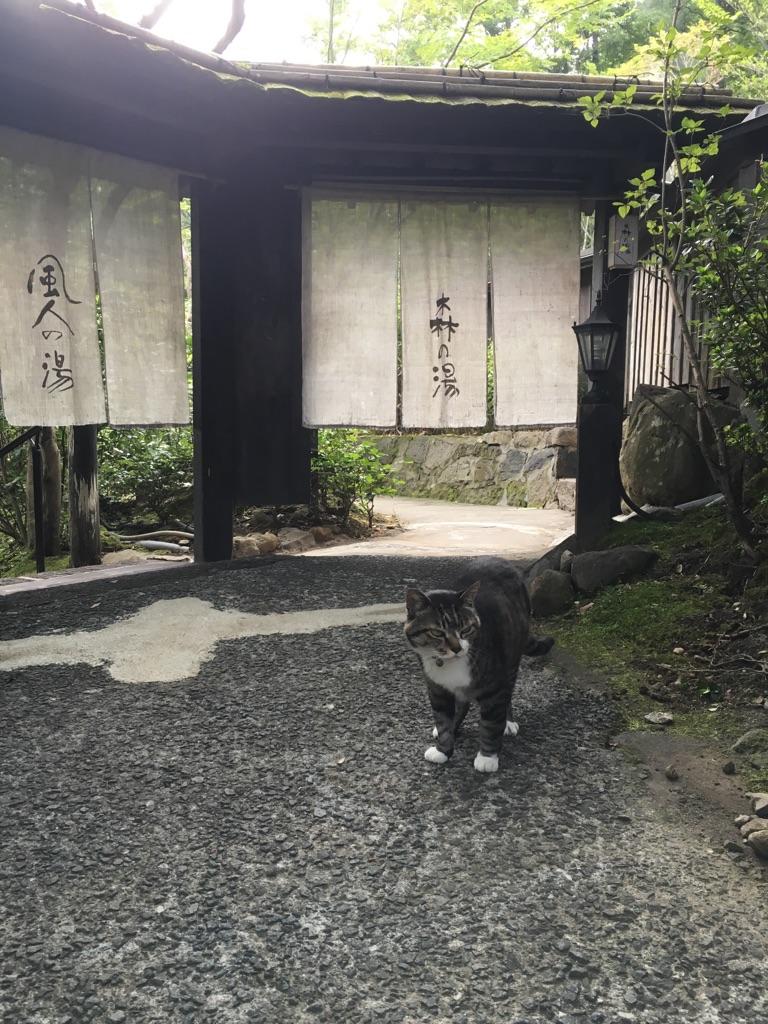 f:id:nagameikuji:20160725150221j:plain