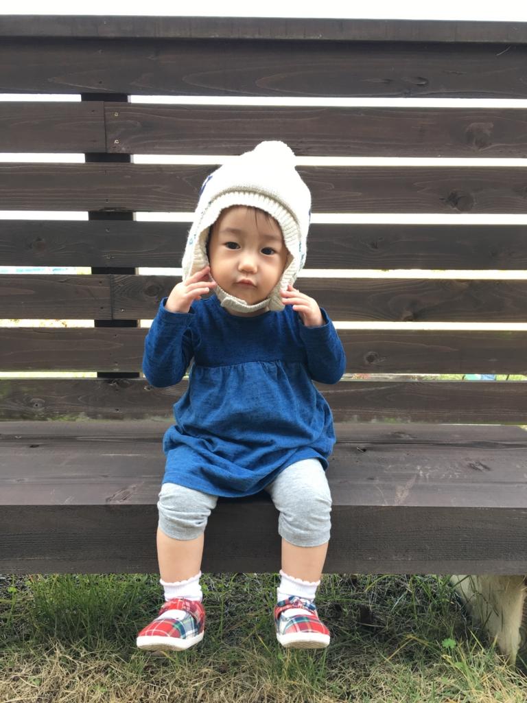 f:id:nagameikuji:20161207140058j:plain