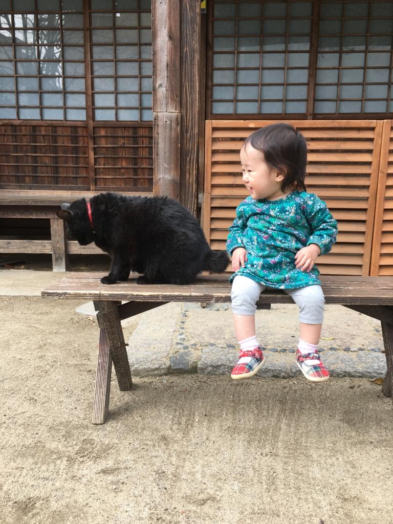 f:id:nagameikuji:20161230152221j:plain