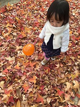 f:id:nagameikuji:20171229170814j:plain
