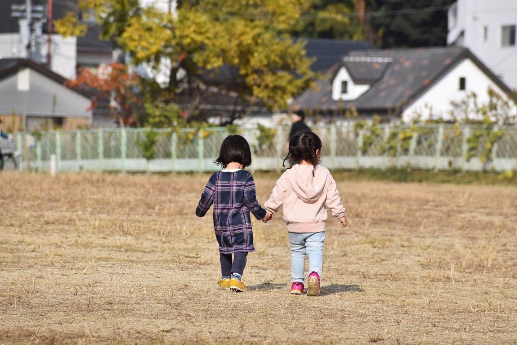 f:id:nagameikuji:20181201224151j:plain