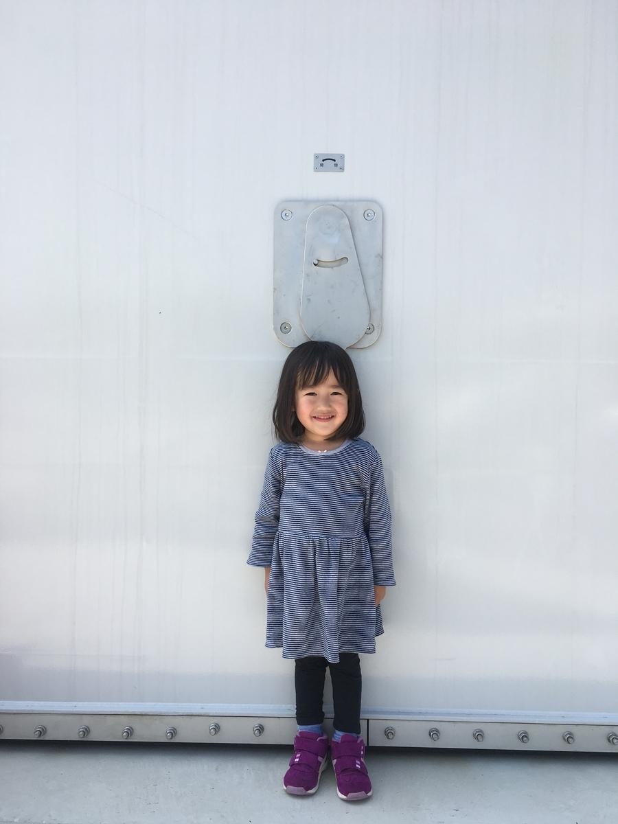 f:id:nagameikuji:20190508174132j:plain