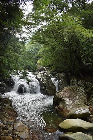 f:id:nagameikuji:20200728152148j:plain