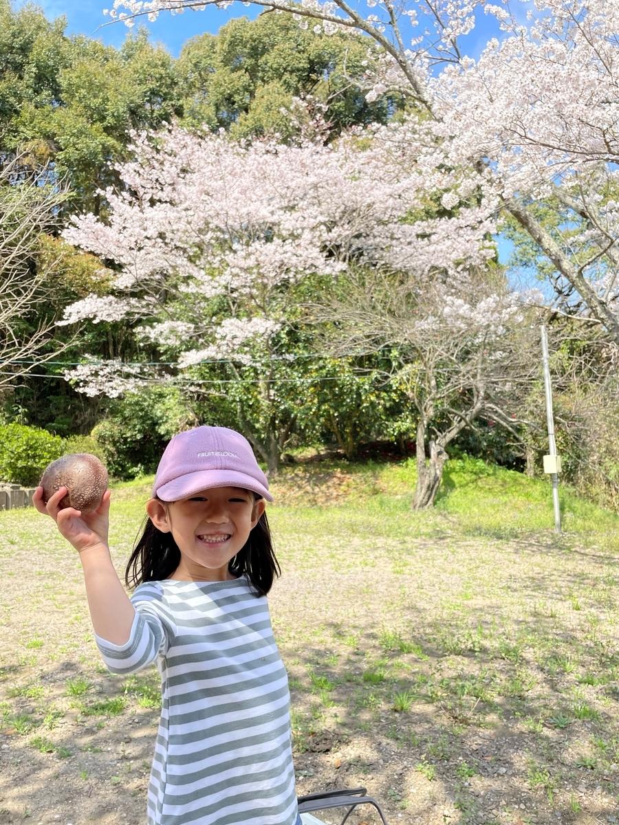 f:id:nagameikuji:20210330074712j:plain