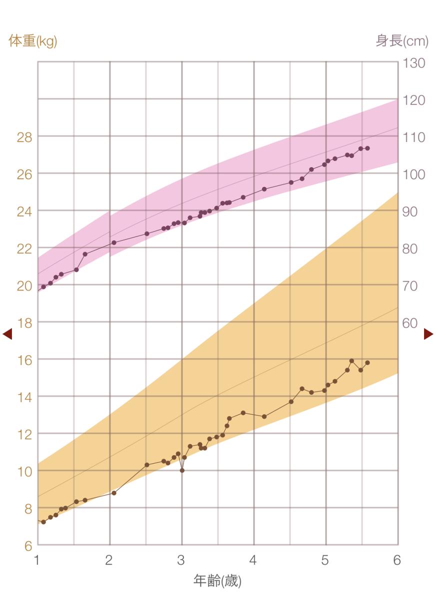 f:id:nagameikuji:20210503085000j:plain