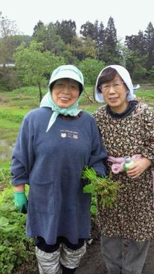 f:id:nagamimiya:20120522203618j:image