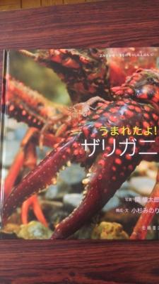 f:id:nagamimiya:20140531153719j:image