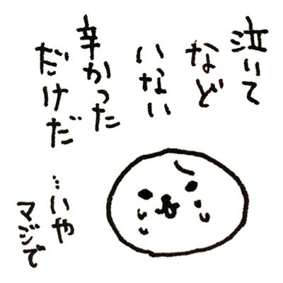 f:id:naganegi222:20170826063613j:plain