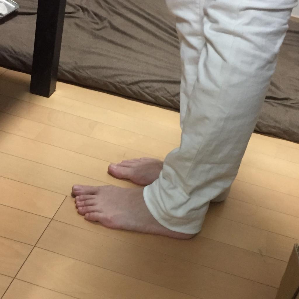 f:id:naganegi222:20170906095024j:plain