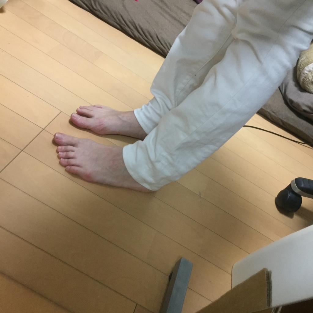 f:id:naganegi222:20170906095046j:plain
