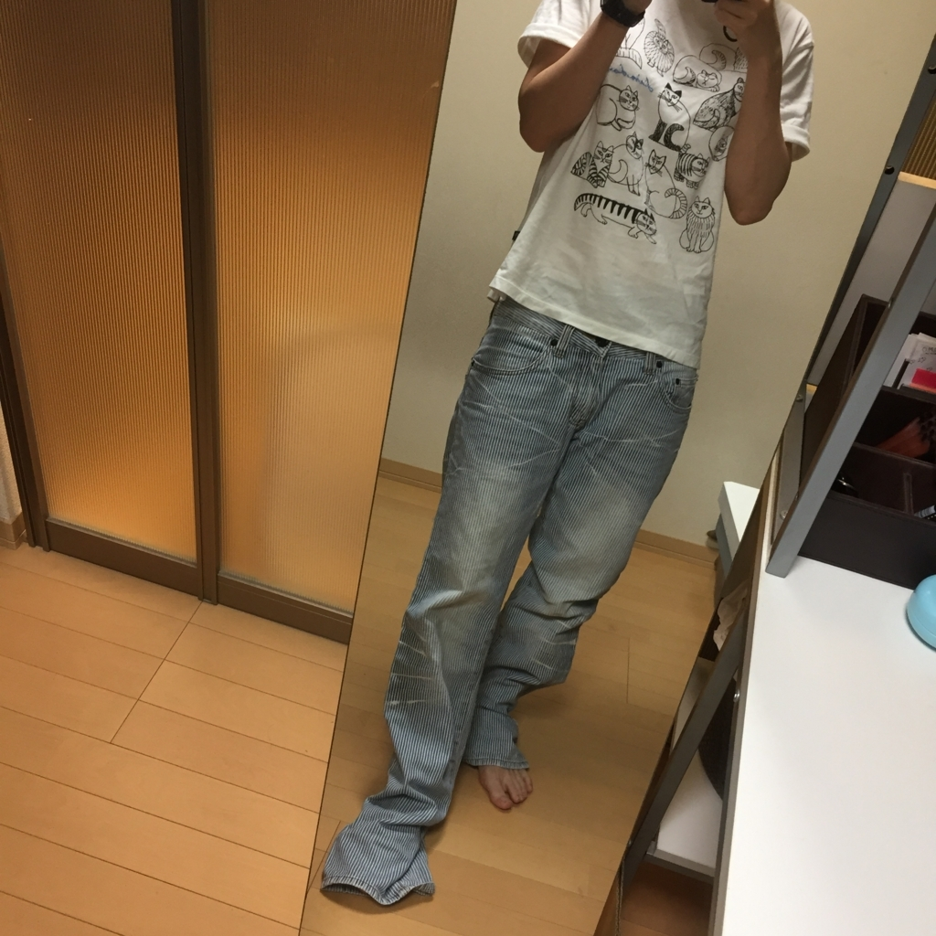 f:id:naganegi222:20170913102736j:plain
