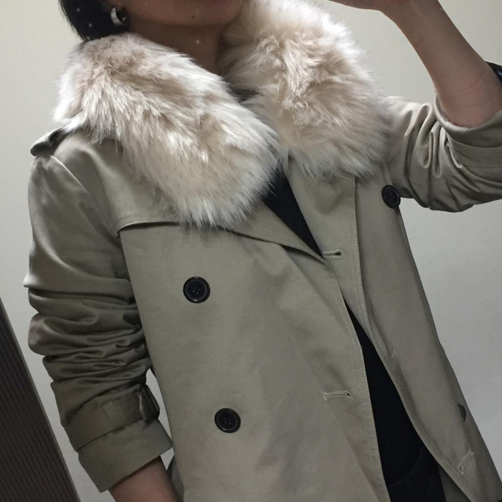 f:id:naganegi222:20171120080636j:plain