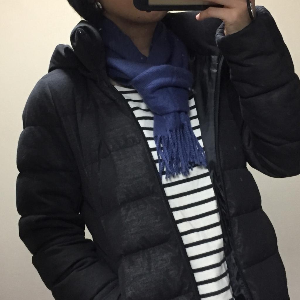 f:id:naganegi222:20171203090938j:plain