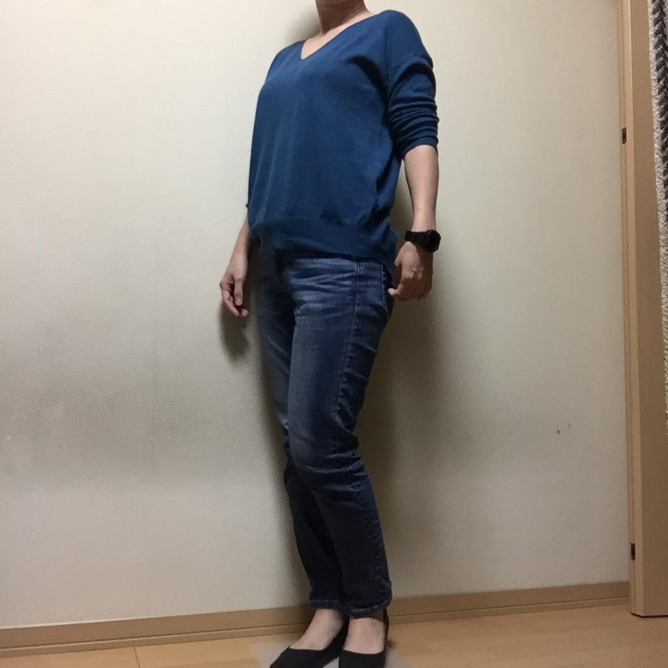 f:id:naganegi222:20181205084909j:plain