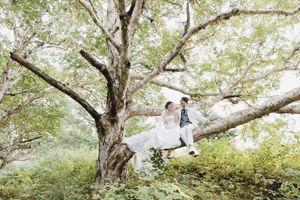タキシードとドレスで木の枝に座っている新郎と新婦