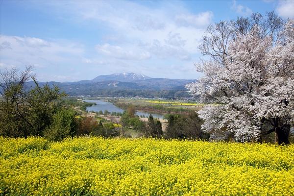 長野県飯山市の風景