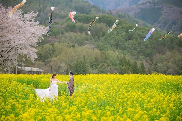 長野県飯山市の菜の花公園にて前撮り