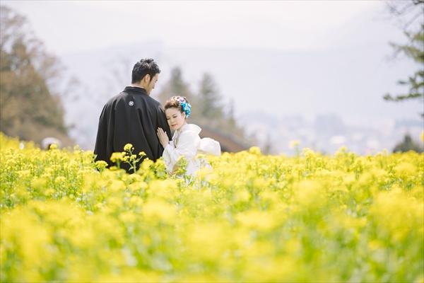 フォトウエディング/写真だけの結婚式
