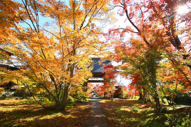 飯山市の秋の風景