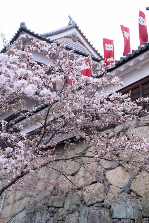 上田城の画像