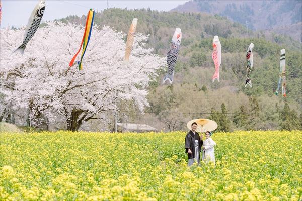 飯山市菜の花公園にて和装の前撮り