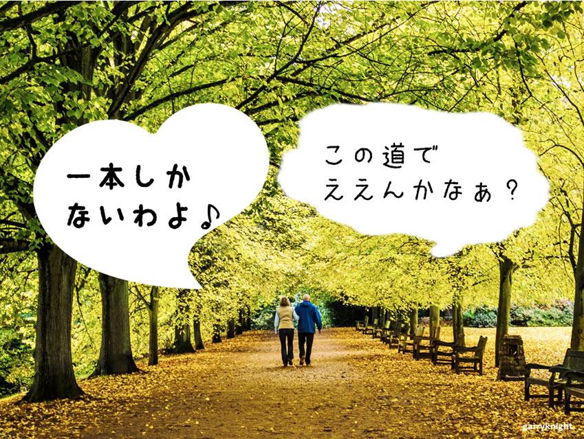 f:id:nagarerukumonogotoku:20161123211821j:plain