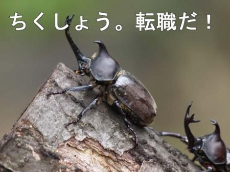 f:id:nagas:20140119013249j:image