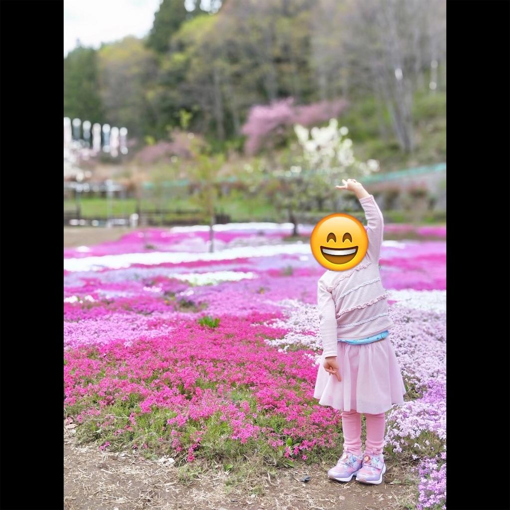 f:id:nagasawa0129:20190507160553j:image
