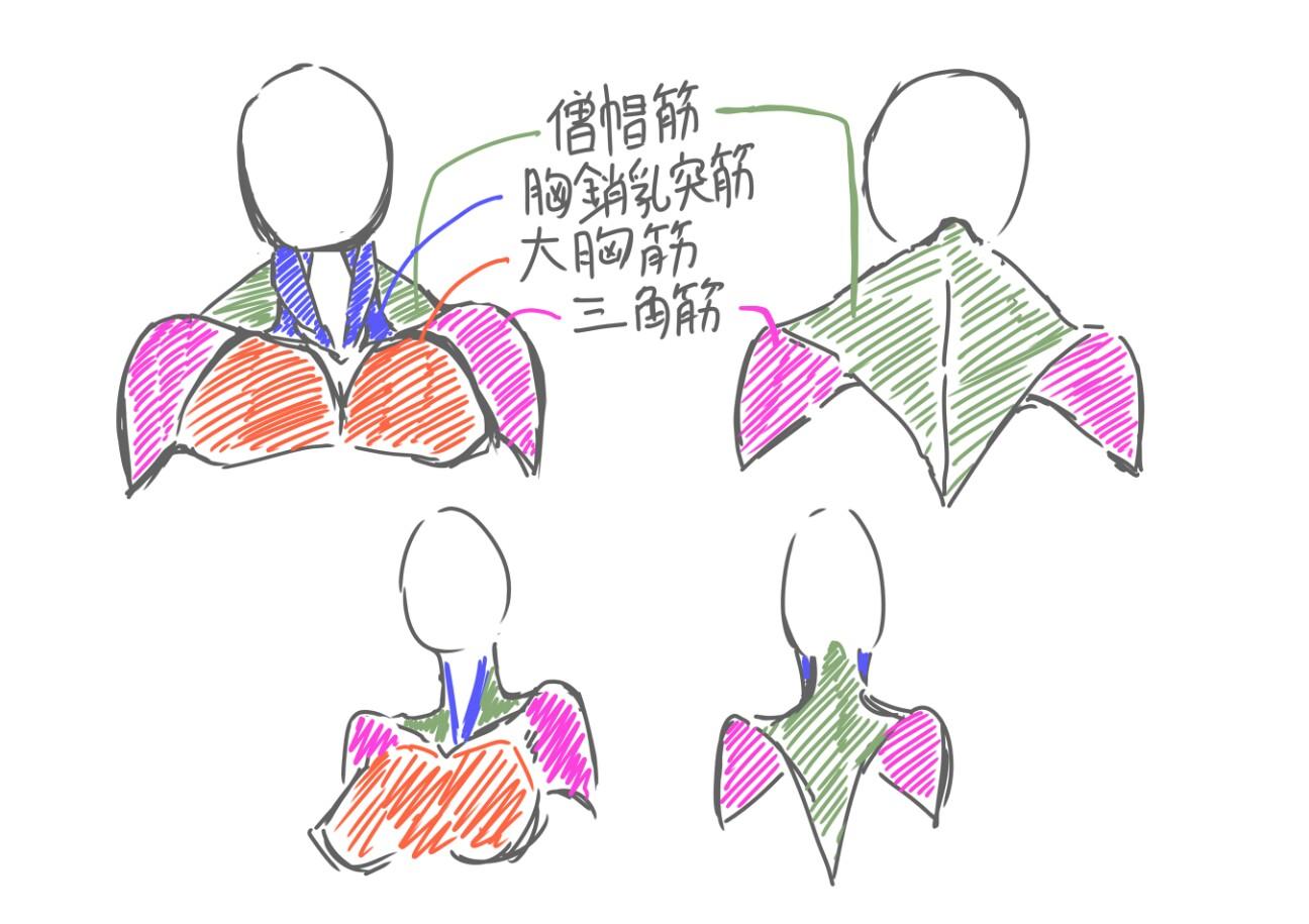 f:id:nagatakatsuki:20170202230227j:image